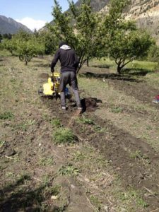 Mini tractors at work in Tserok